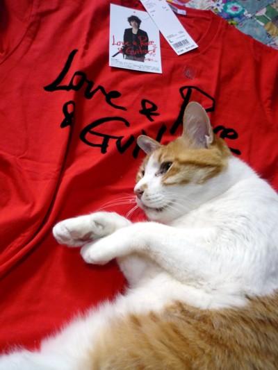 チャボさんTシャツとマルオ君
