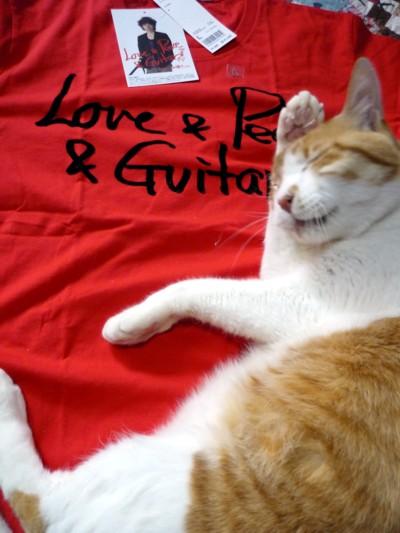 チャボさんTシャツとマルオ君その2