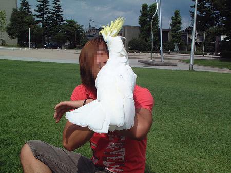 s-2008-08-16-003.jpg