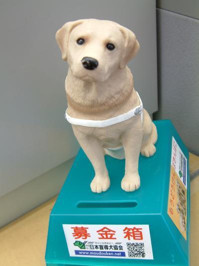 盲導犬育成募金