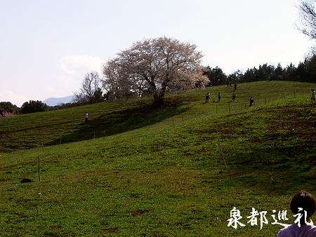 20060402saio3.jpg