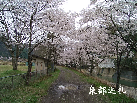 20060409ikeno.jpg