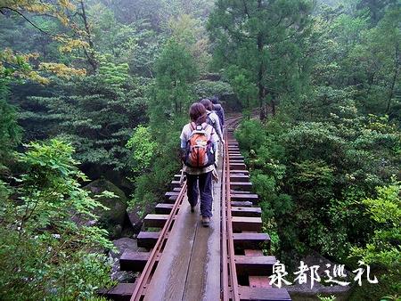 20060423joumonsugi2.jpg