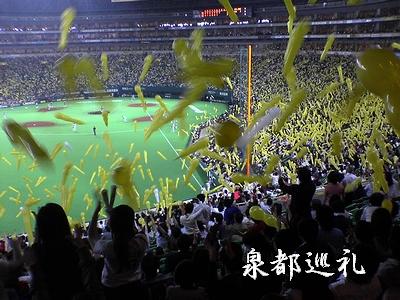 20060524baseball1.jpg