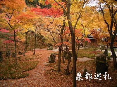20061126koumyouzenji1.jpg