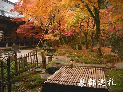 20061126koumyouzenji3.jpg