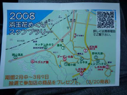 20080301shidareume06.jpg