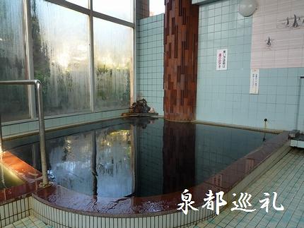 20080307shinyuonsen02.jpg