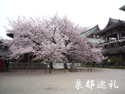 20080405touchoji01.jpg