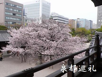 20080405touchoji02.jpg