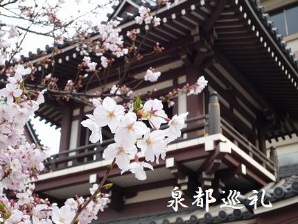 20080405touchoji04.jpg