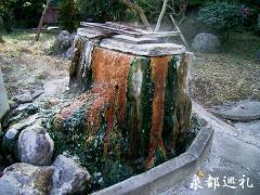 kamekawa20060108_6.jpg