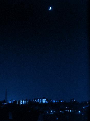 moon111.jpg