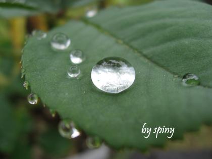 rain07.jpg