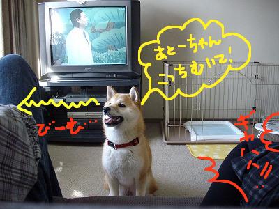 コピー ~ cはな (11)