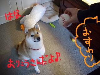 コピー ~ cはな (22)