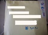 ccはな (6)