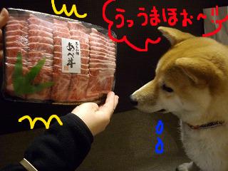 コピー (2) ~ cはな (5)