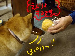 コピー ~ cはな (17)