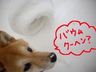 コピー ~ ccはな (11)