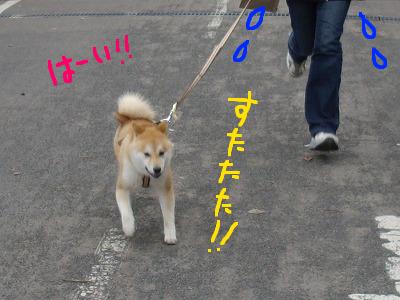 コピー ~ cはな (40)