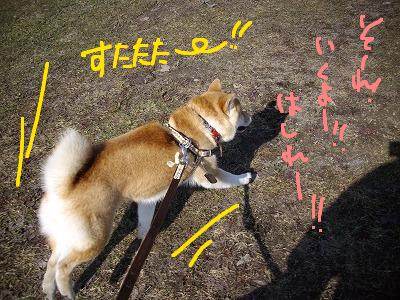 コピー ~ cはな (47)