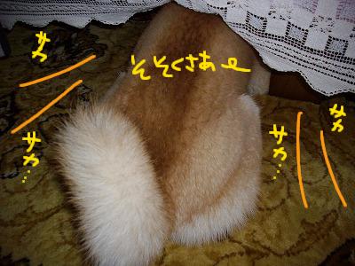 cはな (3)