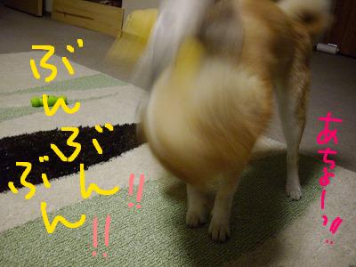 cはな (38)