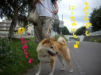 cはな (4)