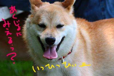 cIMG_9889.jpg