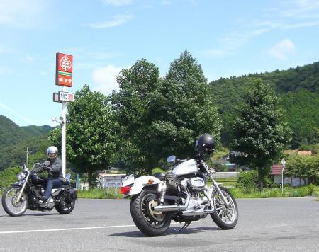 2008.8.24上根ポプラ