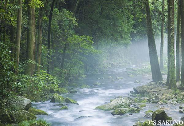 024W0280_2川霧