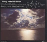 Beethoven_Ysaye.jpg