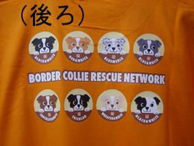 BCRNオリジナルTシャツ(後ろ)