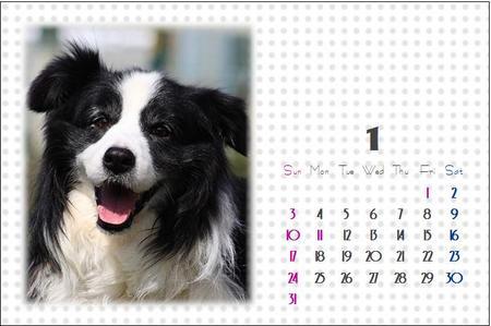 ケイン君支援カレンダー(1月)
