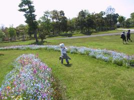 yoshinogari2.jpg