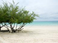 サメット島