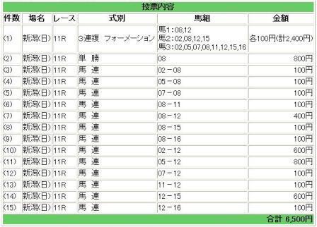 09関谷記念購入