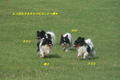 広い芝生で2
