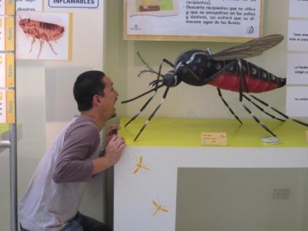 ヘレミアス誕生会と害虫博物館 043