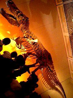 ティラノサウルスのスー(全身)