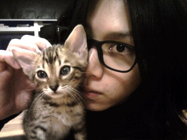 heechul-with-cat