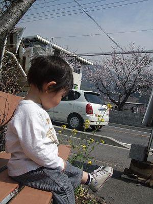 003_20090412134037.jpg