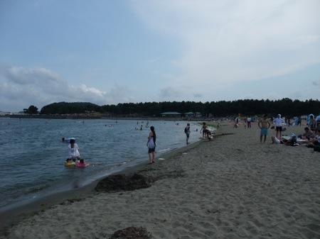 2008_0813CD.jpg