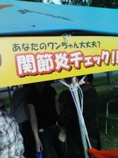 PA0_0979.jpg