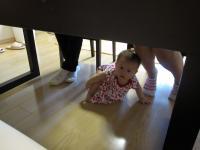 Sニャンテーブルの下へ
