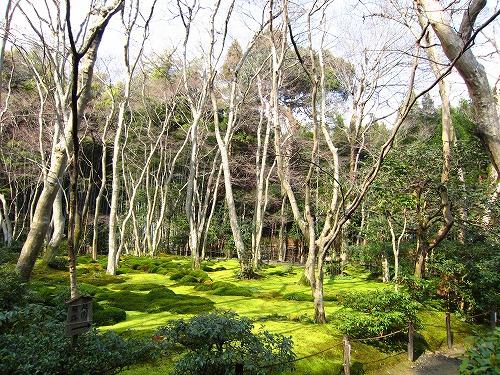 祇園寺 1