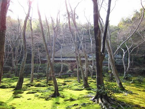 祇園寺 2