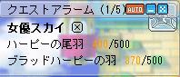 今日の羽20080131