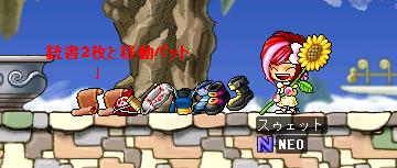 ドロップ20080912